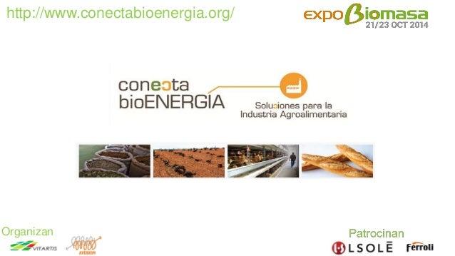 http://www.conectabioenergia.org/  Organizan