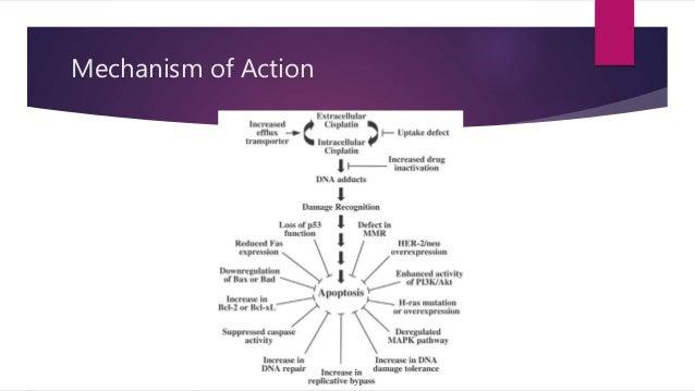 Cytoxan mechanism of action