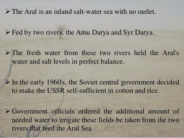 aral sea problem essay