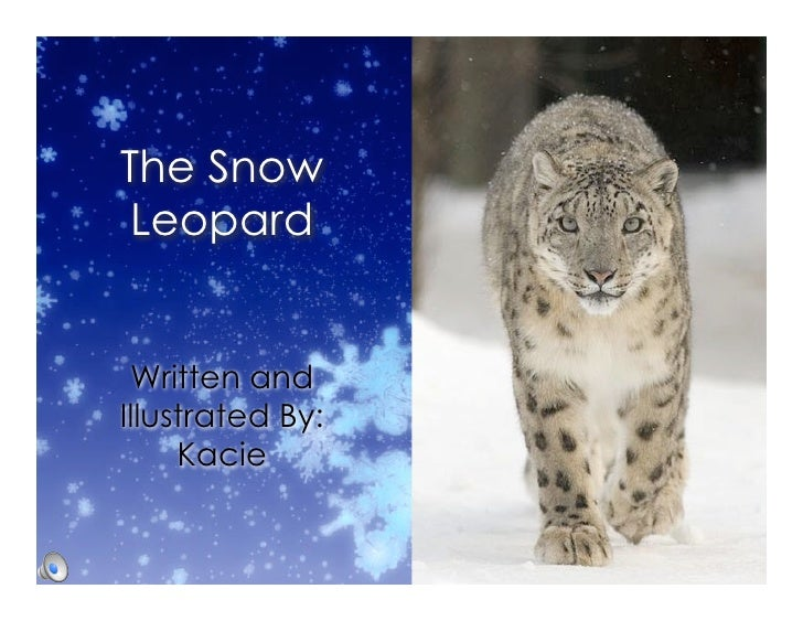 The Snow  Leopard    Written and Illustrated By:      Kacie