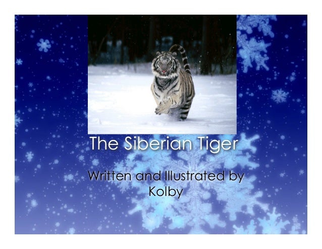 The Siberian Tiger Written and Illustrated by Kolby