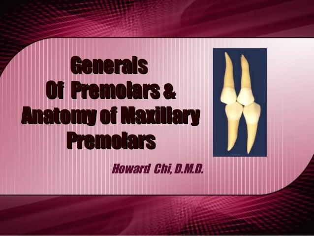 GeneralsGenerals Of Premolars &Of Premolars & Anatomy of MaxillaryAnatomy of Maxillary PremolarsPremolars Howard Chi, D.M....
