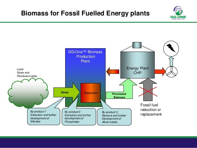 Biomass for Fossil Fuel Power Plants
