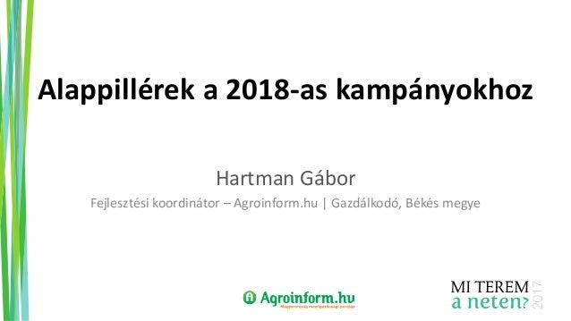 Alappillérek a 2018-as kampányokhoz Hartman Gábor Fejlesztési koordinátor – Agroinform.hu | Gazdálkodó, Békés megye