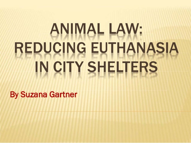 ANIMAL LAW: REDUCING EUTHANASIA IN CITY SHELTERS By Suzana Gartner