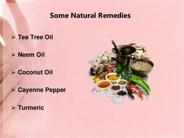 Natural Scabies Treatment Tea Tree Oil