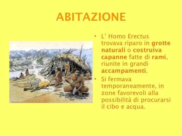 <ul><li>L' Homo Erectus trovava riparo in  grotte naturali  o  costruiva capanne  fatte di  rami , riunite in grandi  acca...