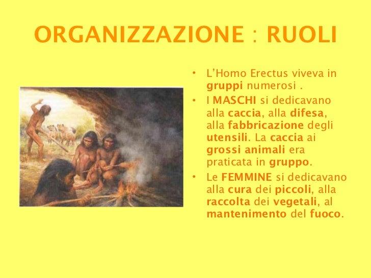 <ul><li>L'Homo Erectus viveva in  gruppi  numerosi . </li></ul><ul><li>I  MASCHI  si dedicavano alla  caccia , alla  difes...