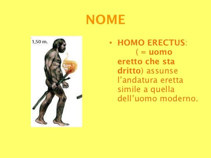 5 Homo Erectus Slide 2