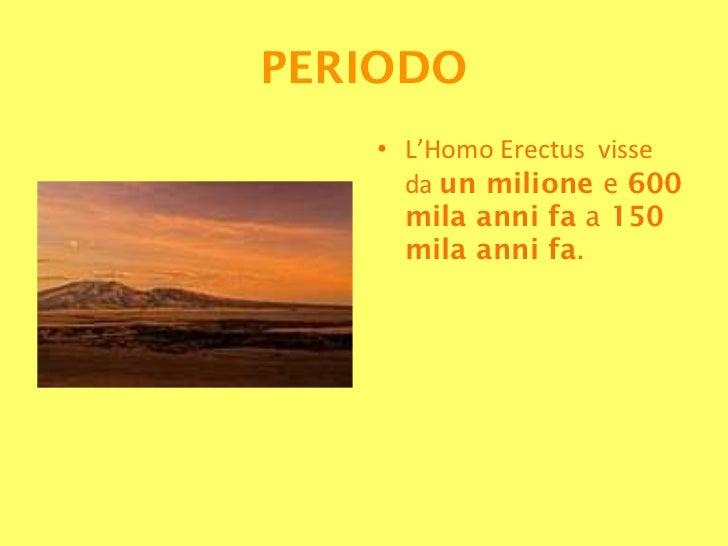 5 Homo Erectus Slide 3