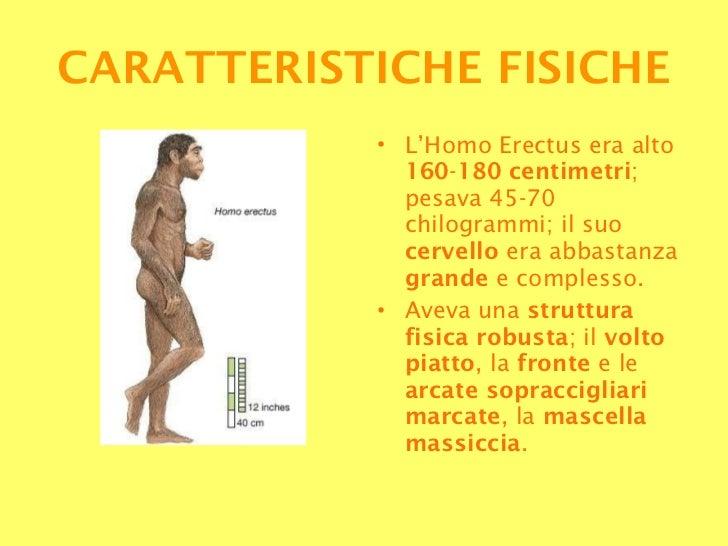 <ul><li>L'Homo Erectus era alto  160 - 180   centimetri ; pesava 45-70 chilogrammi; il suo  cervello  era abbastanza  gran...