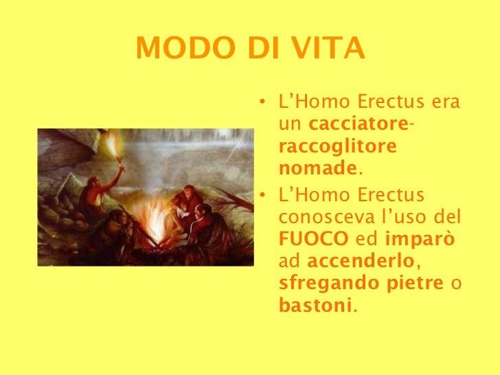<ul><li>L'Homo Erectus era un  cacciatore - raccoglitore nomade .  </li></ul><ul><li>L'Homo Erectus conosceva l'uso del  F...