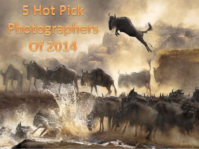 A large number of people are making a career out of photography. If you are also planning to make a name in the field, you...