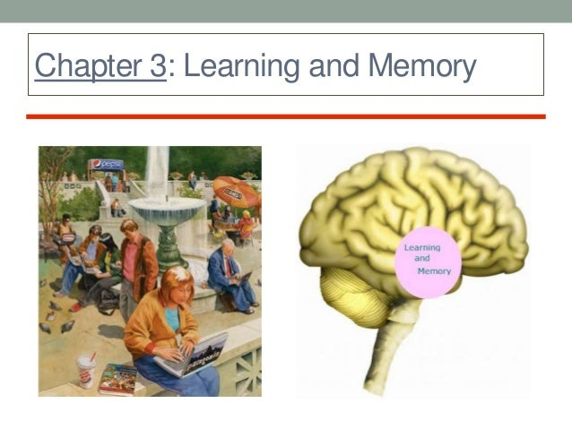 """learning is a relatively permanent change in behavior essay Theories of learning in psychology on eruptingmind   in psychology, """"learning"""" is defined as a relatively permanent change in, or acquisition of, knowledge or behavior."""