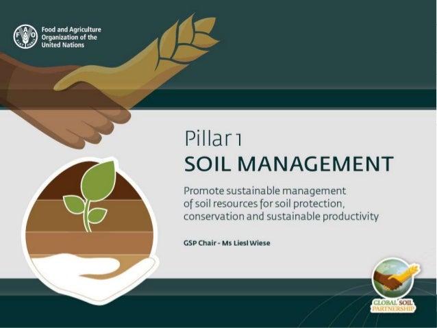 Pillar 1 sustainable soil management for Soil management