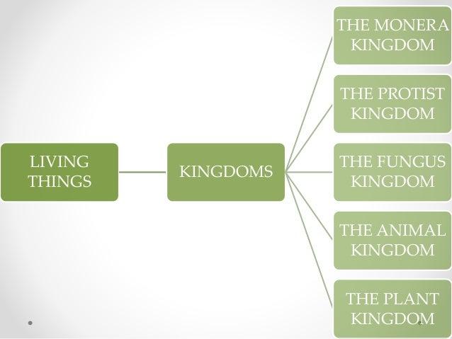 LIVING THINGS KINGDOMS THE MONERA KINGDOM THE PROTIST KINGDOM THE FUNGUS KINGDOM THE ANIMAL KINGDOM THE PLANT KINGDOM