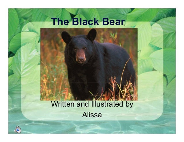The Black Bear Written and Illustrated by Alissa