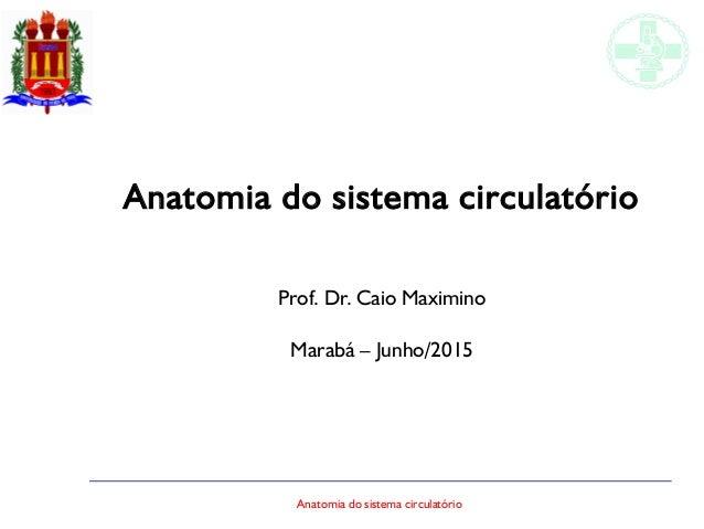 Anatomia do sistema circulatório Anatomia do sistema circulatório Prof. Dr. Caio Maximino Marabá – Junho/2015