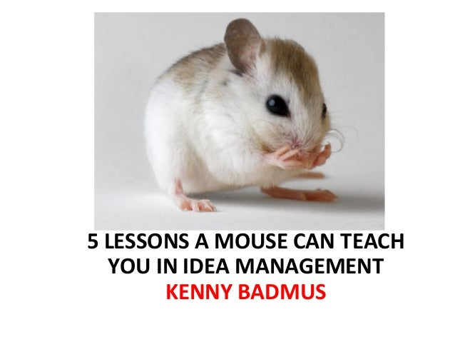 5 LESSONS A MOUSE CAN TEACH  YOU IN IDEA MANAGEMENT       KENNY BADMUS