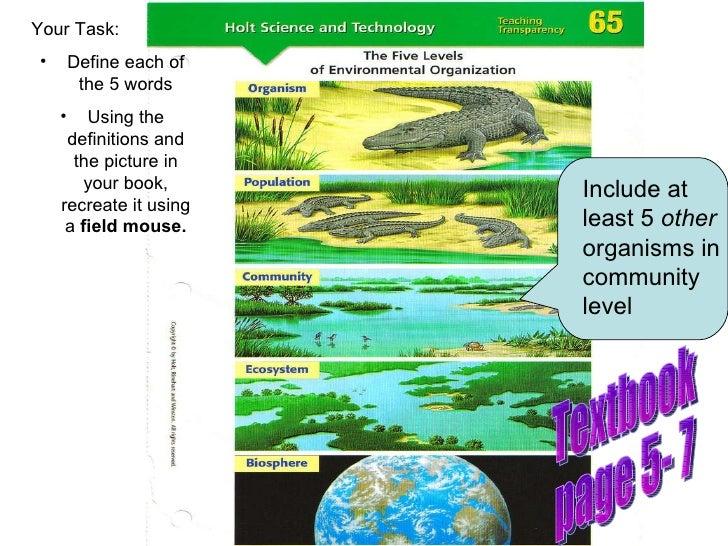 5 Levels Of Environmental Organization