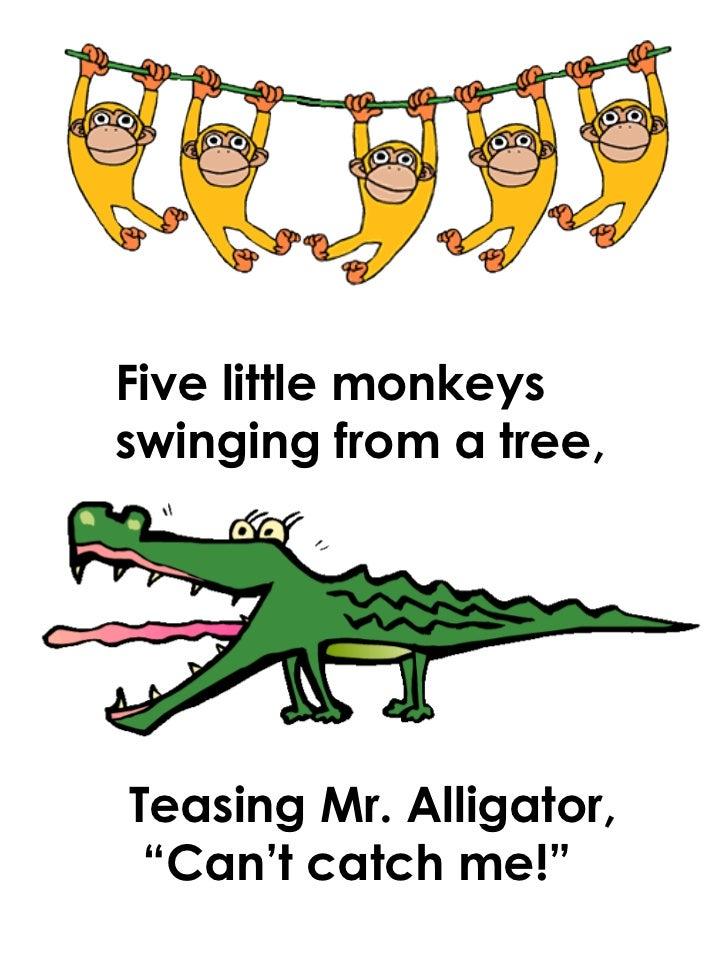 5 Littlemonkeys 1