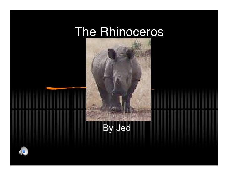 The Rhinoceros         By Jed