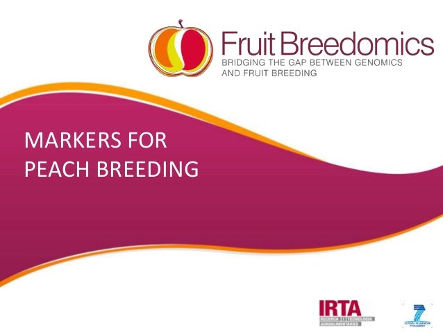 MARKERS FOR PEACH BREEDING  YOUR LOGO