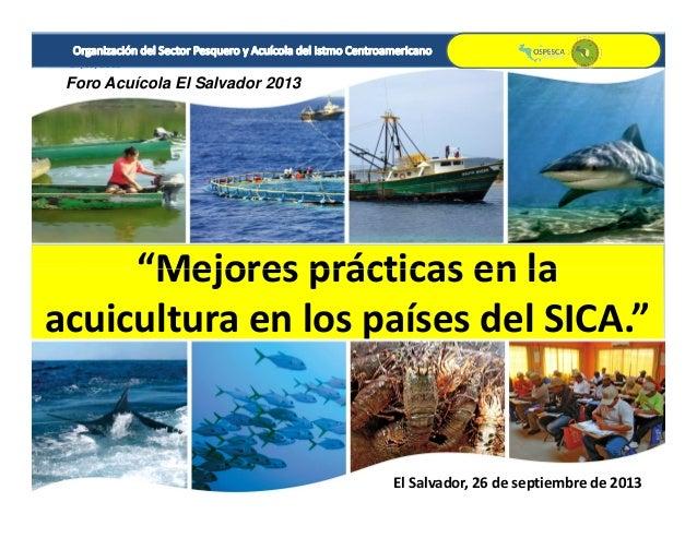 """27/09/2013 1 """"Mejores prácticas en la Foro Acuícola El Salvador 2013 """"Mejores prácticas en la acuicultura en los países de..."""