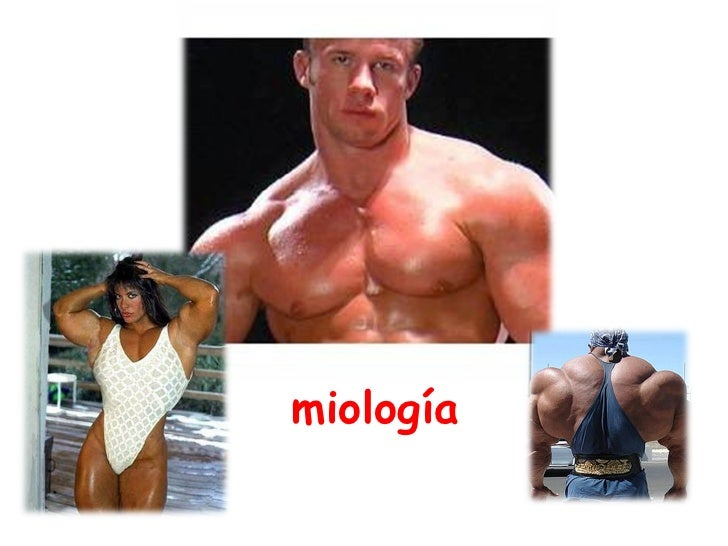 miología