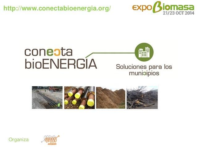 http://www.conectabioenergia.org/  Organiza