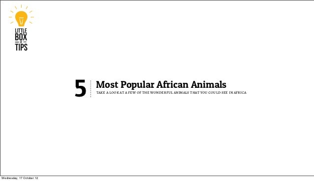 5   Most Popular African Animals                               take a look at a few of the wonderful animals that you coul...