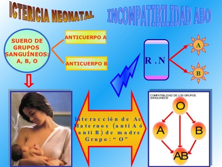 "ICTERICIA NEONATAL INCOMPATIBILIDAD ABO Interacción de Ac  Maternos (anti A ó  anti B) de madre Grupo: ""O""  SUERO DE GRUPO..."