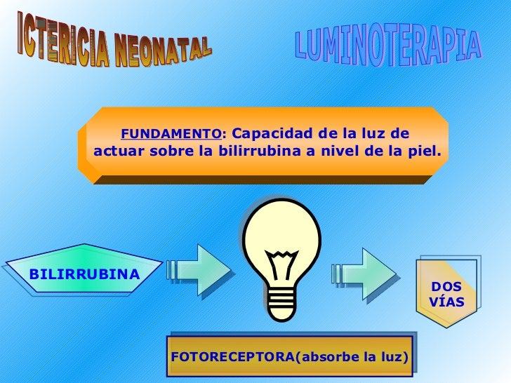 ICTERICIA NEONATAL LUMINOTERAPIA FUNDAMENTO :  Capacidad de la luz de  actuar sobre la bilirrubina a nivel de la piel. BIL...