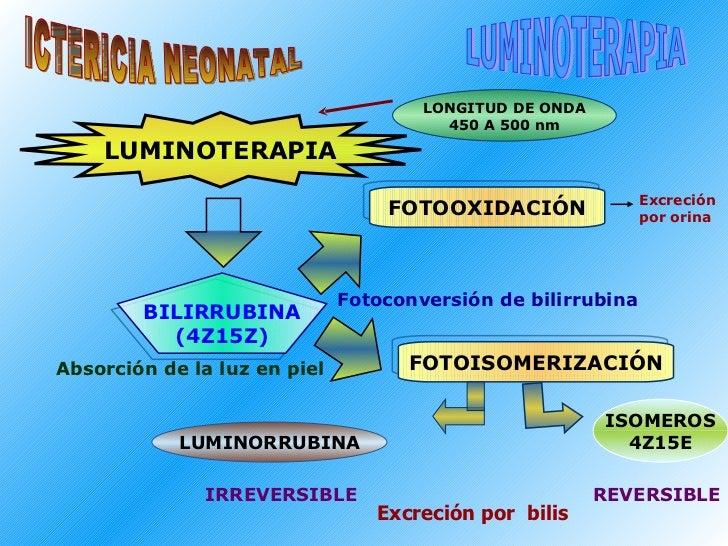 ICTERICIA NEONATAL LUMINOTERAPIA LUMINOTERAPIA BILIRRUBINA (4Z15Z) FOTOOXIDACIÓN FOTOISOMERIZACIÓN LUMINORRUBINA ISOMEROS ...
