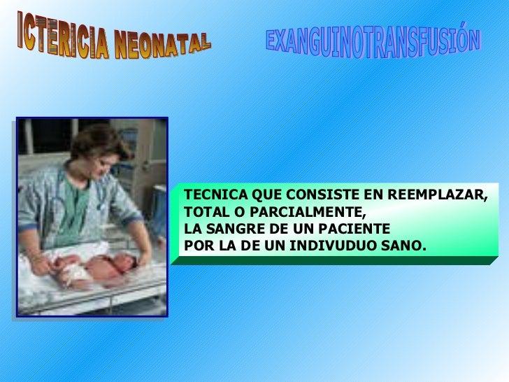 ICTERICIA NEONATAL EXANGUINOTRANSFUSIÓN TECNICA QUE CONSISTE EN REEMPLAZAR,  TOTAL O PARCIALMENTE,  LA SANGRE DE UN PACIEN...