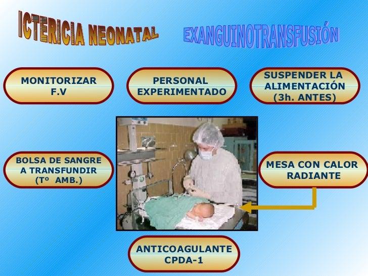 ICTERICIA NEONATAL EXANGUINOTRANSFUSIÓN PERSONAL  EXPERIMENTADO MONITORIZAR F.V SUSPENDER LA  ALIMENTACIÓN (3h. ANTES) BOL...