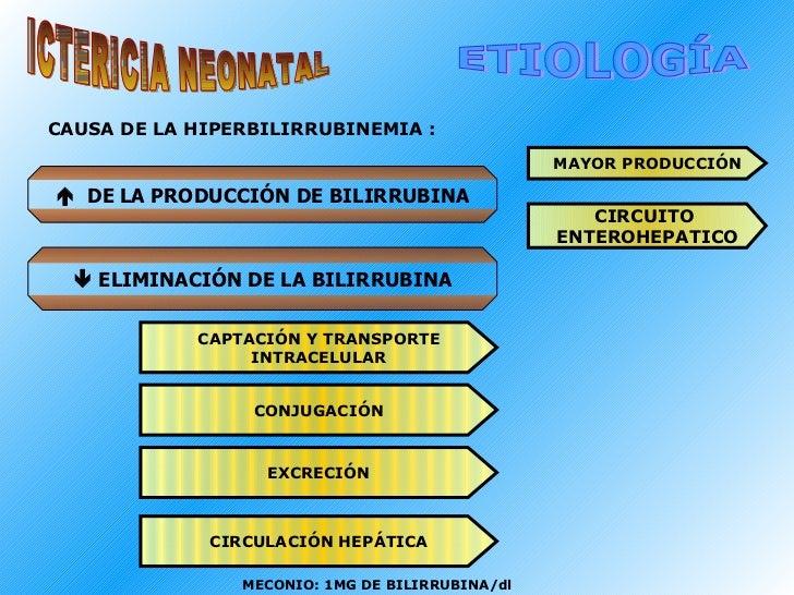ICTERICIA NEONATAL ETIOLOGÍA    DE LA PRODUCCIÓN DE BILIRRUBINA    ELIMINACIÓN DE LA BILIRRUBINA MAYOR PRODUCCIÓN CIRCUI...