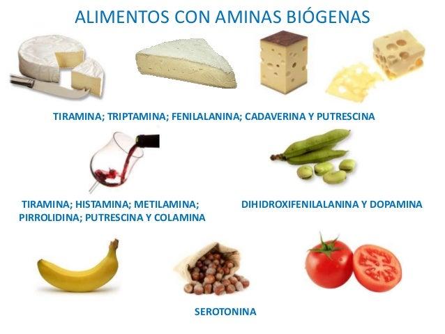 Resultado de imagen para Algunas aminas presentes en los alimentos