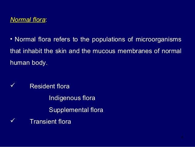 5 oral flora for Floar meaning