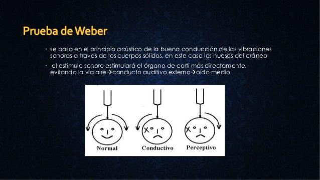  se basa en el principio acústico de la buena conducción de las vibraciones sonoras a través de los cuerpos sólidos, en e...