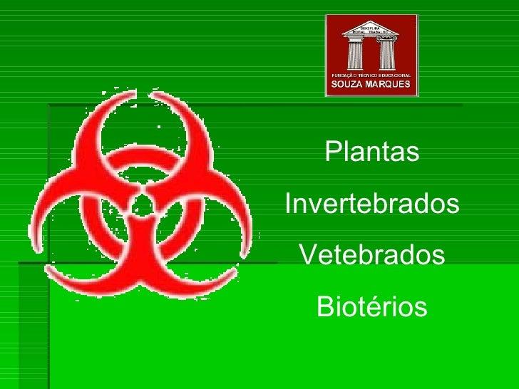 Plantas Invertebrados Vetebrados Biotérios