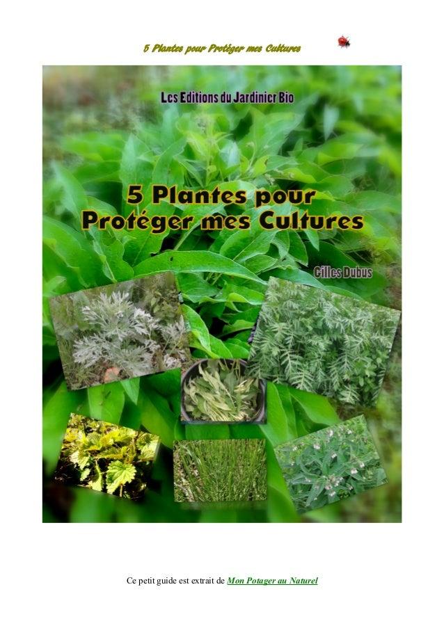 5 Plantes pour Protéger mes Cultures Ce petit guide est extrait de Mon Potager au Naturel