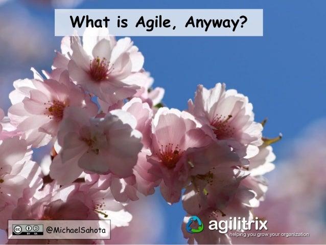 5 Practices for an Agile Mindset Slide 3