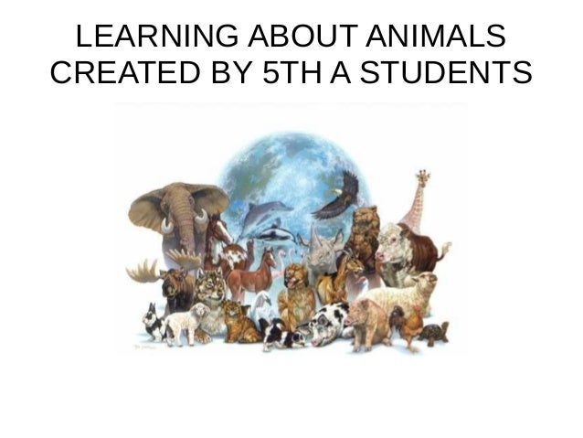 LEARNING ABOUT ANIMALS CREATED BY 5TH A STUDENTS