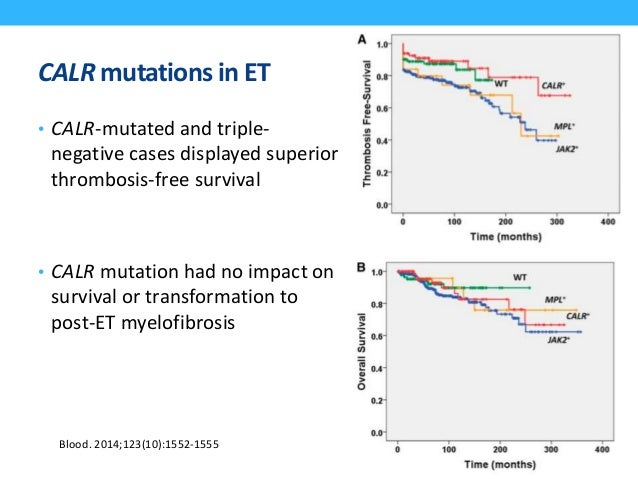 JAK2 or CALR mutation in ET • Compared with JAK2-mutated cases, CALR-mutated patients were: • younger • ↓ leukocyte count ...