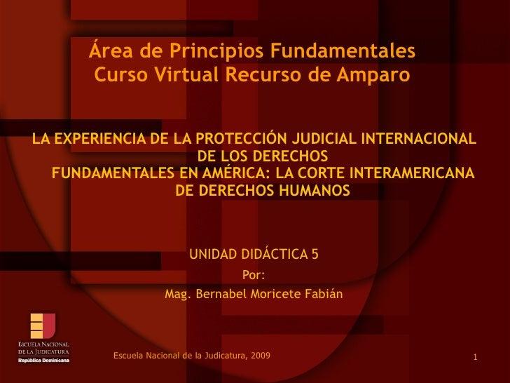 Área de Principios Fundamentales Curso Virtual Recurso de Amparo LA EXPERIENCIA DE LA PROTECCIÓN JUDICIAL INTERNACIONAL DE...