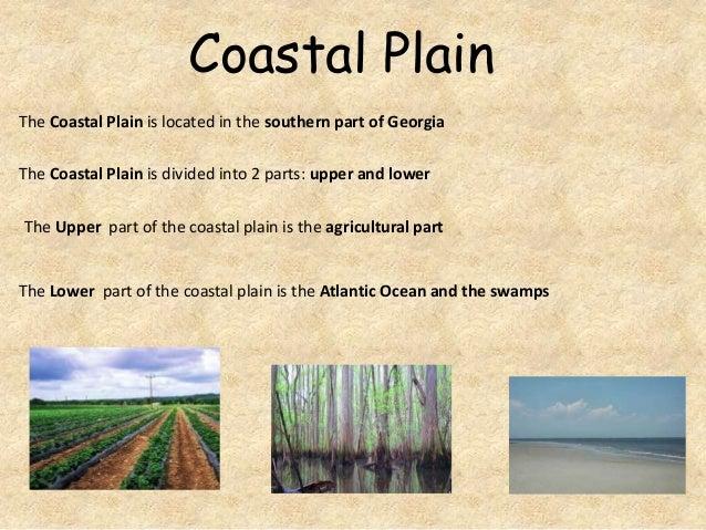 Coastal Plain The Coastal Plain is located in the southern part of Georgia  The Coastal Plain is divided into 2 parts: upp...