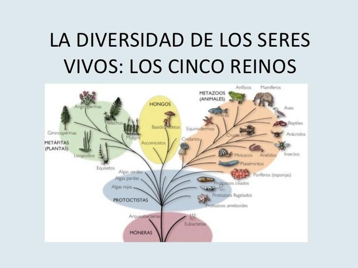 LA DIVERSIDAD DE LOS SERES VIVOS: LOS CINCO REINOS