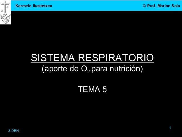 Karmelo Ikastetxea                          © Prof. Marian Sola          SISTEMA RESPIRATORIO               (aporte de O2 ...