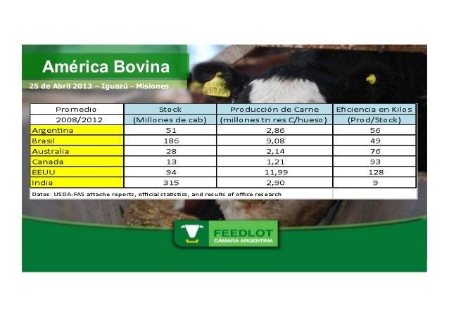 América Bovina25 de Abril 2013 – Iguazú - Misiones